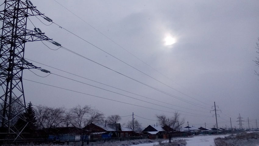 Winter Snow Tree Nature No People Sky Buryatia, Russia, Ulan-Ude