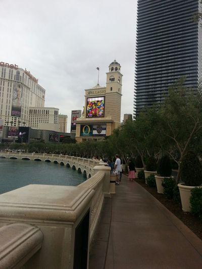 Hello World exploring Vegas Withfriends