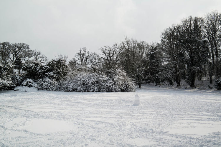 Beauty In Nature Cold Temperature Landscape Nature No People Outdoors Scenics Snow Tranquil Scene Tranquility Tree Weather White Color Winter