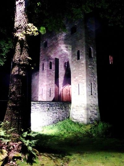 Architecture Building Exterior Built Structure Damaged Exterior History Lit Up Entrance. Medieval Castle Entrance At Night. Night Shot No People Old Outdoors Spooky Castle Stonework. Tree Trunk In Forground Weathered Window