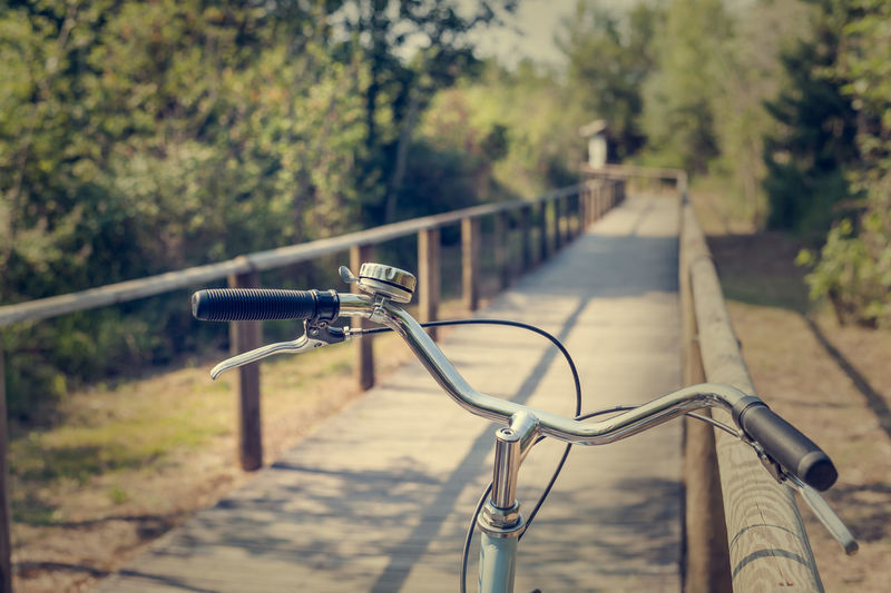 Close-up of bicycle on railing against trees
