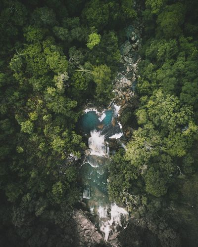 Waterfall from above Nature Beauty In Nature Green Color Waterfall Tree Dronephotography Drone  Outdoors Water