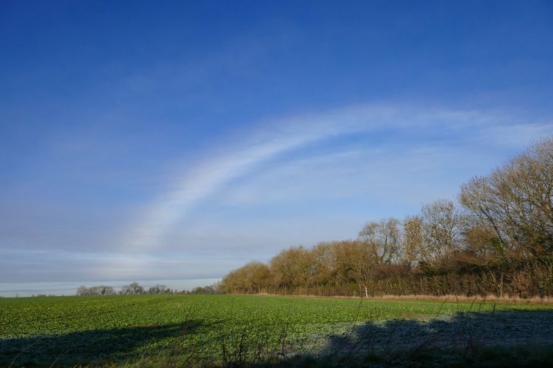 As the ice turned to mist, the beautiful peculiarity of a fog bow appeared. White Rainbow Fogbow Plant Sky Beauty In Nature Tree Growth Scenics - Nature Tranquility Landscape Tranquil Scene Cloud - Sky Field Environment Land No People Nature Day Rural Scene Agriculture Green Color Crop