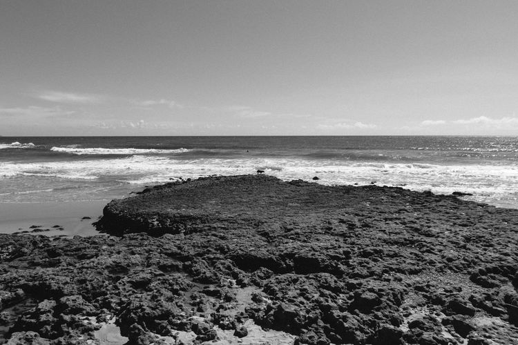 The dog Beach Beachphotography Beauty In Nature Black And White Blackandwhite Calm Calmness Day Dog Horizon Over Water Nature Ocean Outdoors Portugal Portugal_em_fotos Rock - Object Sand Scenics Sea Shore Sky Tranquil Scene Tranquility Water Wave