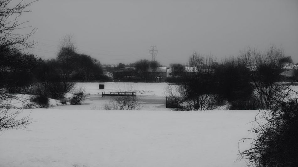 Frozen Lake Urban Lake Frozen Nature Frozen Water Snow Snowing Urban Lake Snow Urban Landscape