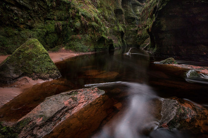 Devil's Pulpit in Schottland Scotland Fine Art Photography Fine Art Canon Wide Angle Canon EOS750D Canon 10-18 Mm Devils Pulpit Outdoors Schottland Art Traveller Newoneyeem Naturelovers Nature Brownwater Drymen Brown Water Travel Photography Travel Destinations Water Tree Forest Motion River Long Exposure Flowing Water Stream - Flowing Water Flowing Power In Nature Moss
