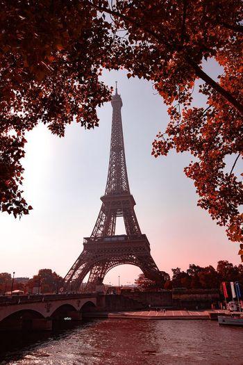 Red Temptation Eiffel Tower Paris Travel Destinations Bestoftheday Photography EyeEm Best Shots Architecture Built Structure Tree Tower Travel Destinations Sky Tall - High City Tourism