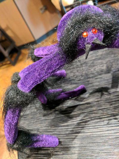 Close-up of purple iris