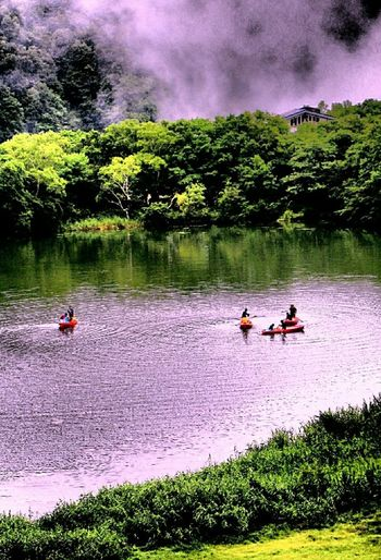 In the deep forest. Llake Lake Side Lake View Canoe Vessel Boat Sailing Forest Wood Green Nature View Naturephotography Nature Photography Fog Foggy Lake View Japanese Scenery Japanese Nature Astronomy Tree Water Men Togetherness Sport Sky