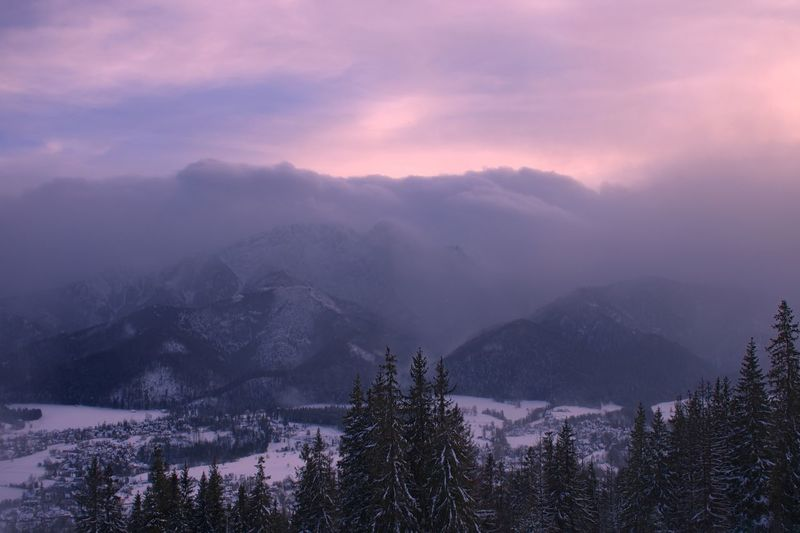 Tatra Mountains Poland Zakopane Mountain Nature Cold Temperature Weather Winter Beauty In Nature Scenics Tranquility Snow Tranquil Scene Outdoors No People Mountain Range Landscape Fog Sky Tree
