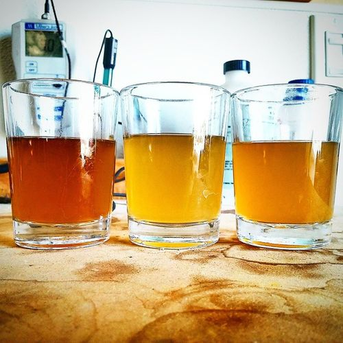 Coming soon... HDPA From left to right: First runnings, Last runnings, Pre-boil gravity HDPA Srqbeerscene Fla Floridabeer floridacraftbeerscene floridabeerscene floridacraftbeer Sarasota instabeer paleale jdubsbrewingcompany Jdubsbrewing @jdubsbrewco @jdubsbrewing craftbeer beer beersofinstagram @thecraftculture