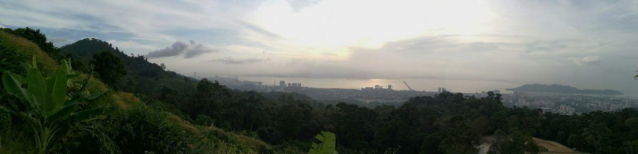 Penang Island Enjoying Life Taking Photos Hilltop Banana Tree Relaxing Freedom! Penang Bridge