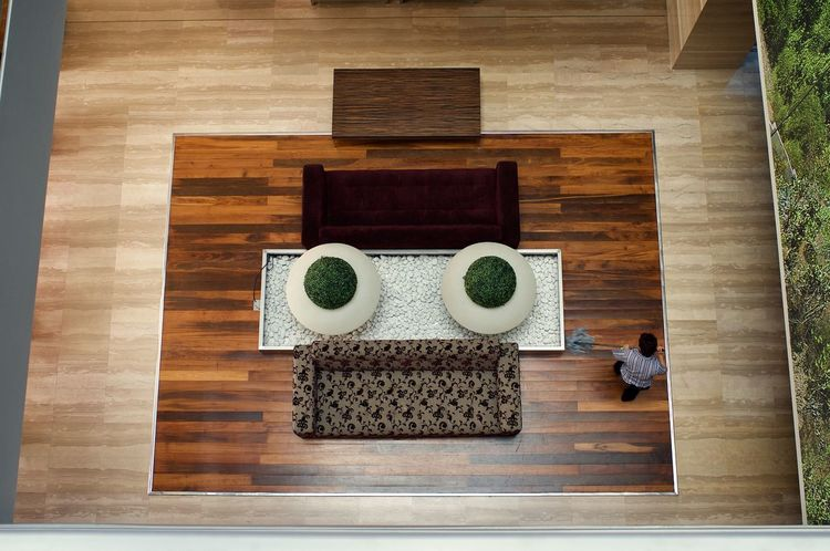 face wash Arcimboldo Style Face High Angle View Indoors  Lobby View Mopping Robot Sofa Table Vases