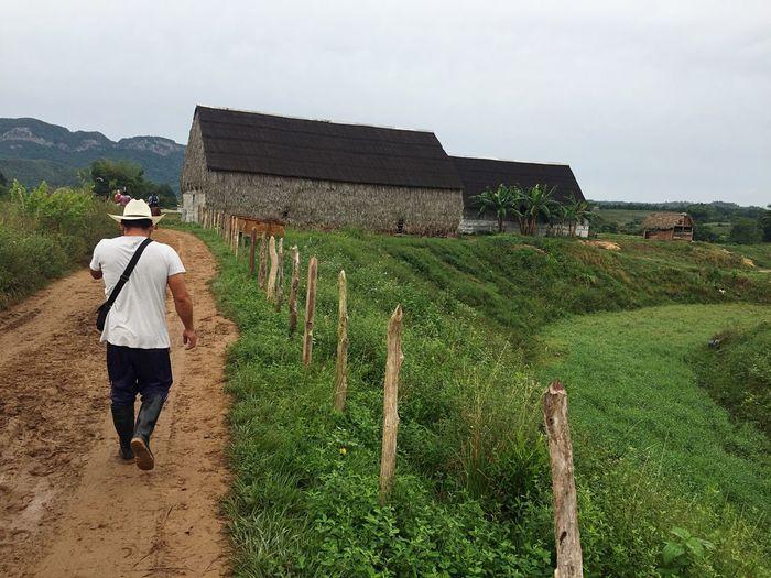 Cowboy Rural Scenes