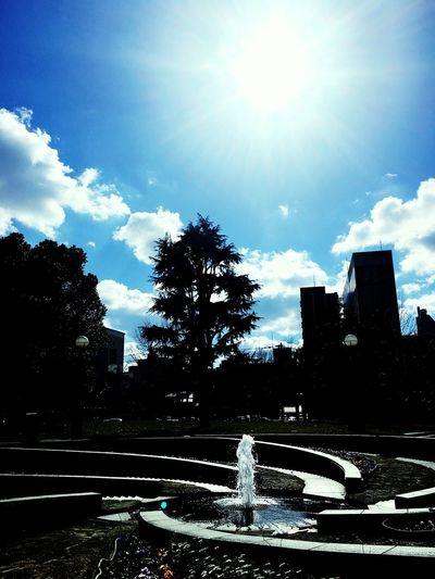 冷泉公園でのひととき〜 Park Park Life Sky Fountain Sunbeam Tree Water Outdoors Sun Sky And Clouds Skyporn Sky_collection Skyscraper Sky Collection Skylovers Cloud Cloud - Sky Clouds And Sky Cloudscape