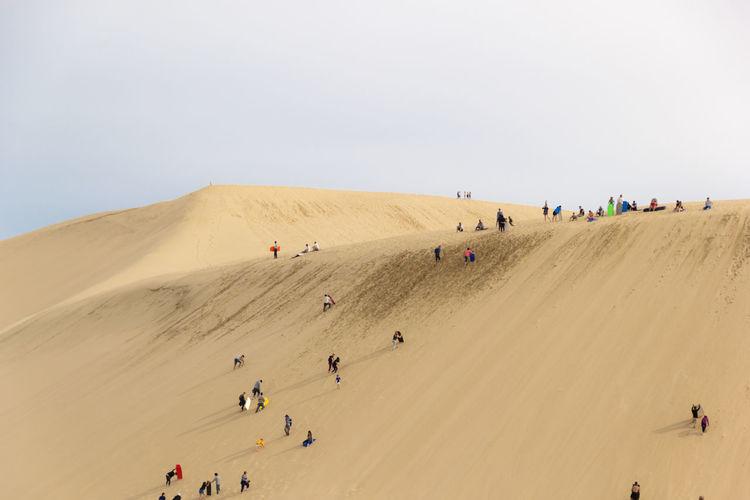 Group of people playing sandboard on sand dune