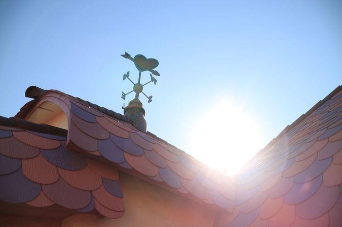 Tokyo Disney Land Minnie Mouse Minnie'house 逆光 こもかめら ミニーちゃんの家♡こんな家に住めたら毎日 Happy なんだろうな( ¨̮ )