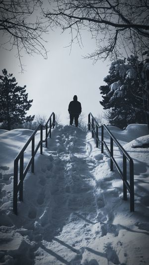 One man Silhouette Man Back Snow Dark Man Lonely Man In The Park Walk In The Park Strange Man Back Nature Winter Stairs Trees In The Park EyeEmNewHere