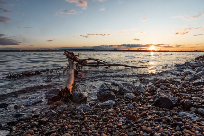 Beach Beauty In Nature Cloud - Sky Driftwood Horizon Horizon Over Water Idyllic Land Nature No People Non-urban Scene Outdoors Pebble Rock Scenics - Nature Sea Sky Solid Sunset Tranquil Scene Tranquility Water Wood