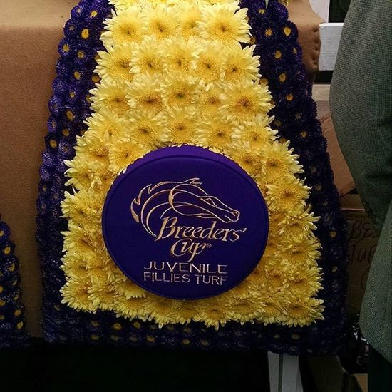 Flowers at the Breederscup at Keeneland today Racehorse Thoroughbredracing Selfie Autumn Fallingleaves Lexington Autumnleaves Lex Selfies