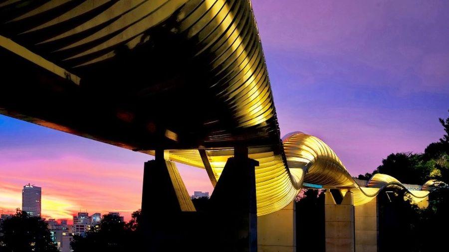 it si wave bridge built at Singapore. Built Structure