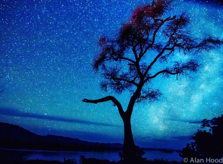 Night Sky over Zambezi River Zimbabwe Africa Stars Starry Night Starry Sky Nightphotography Night Photography Starry Starry Night Long Exposure Manapools Nightshot Starscape
