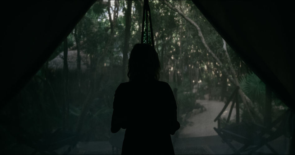 Rear view of silhouette woman standing in forest