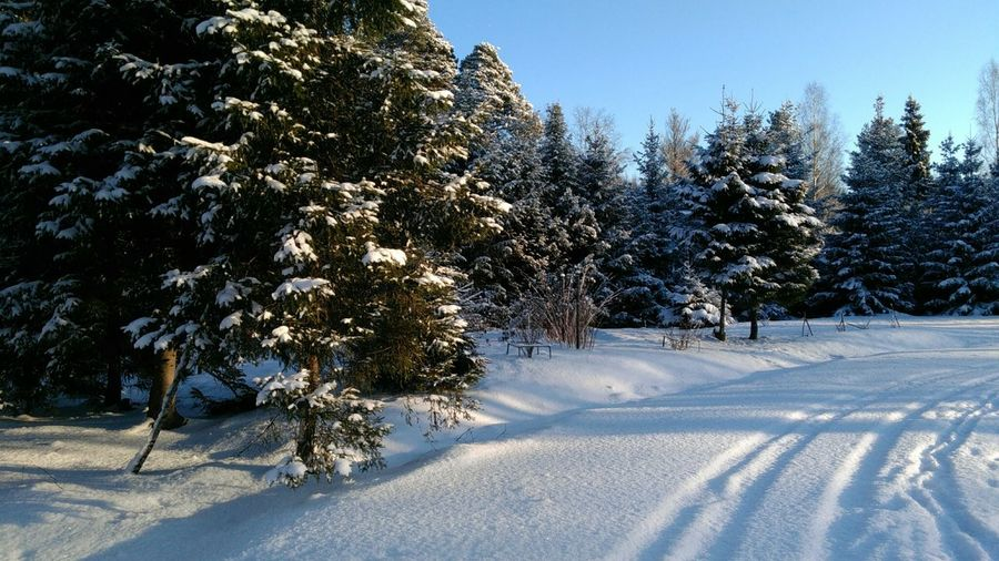 зимний пейзаж, зимняя дорога зима зимний пейзаж зимняядорога