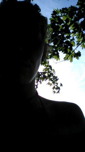 Summer days :). Trees Nature Beautiful Day Enjoying Life