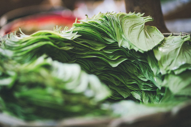 Close-up of green leaves in market