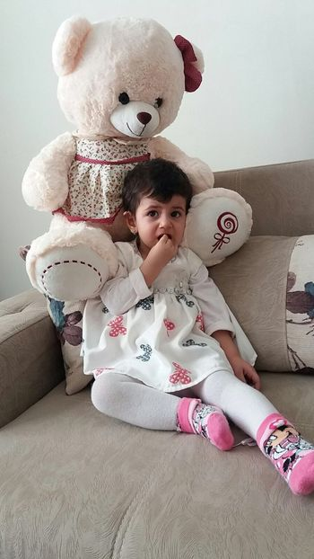 Elif:) Tedy Bear ❤ Tedy Bear🐻 Teddy Bear Tedybear Stuffed Toy Childhood Toy Sofa Indoors  Home Interior People