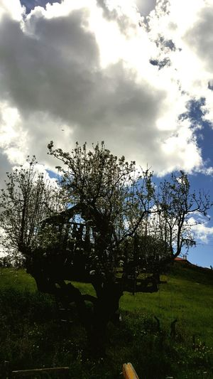 Céu E Nuvens Casa Na árvore