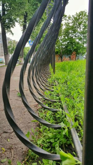 Perspectives - fences - wrought iron Check This Out Urban Geometry Perspectives Sumy Ukraine суми Україна
