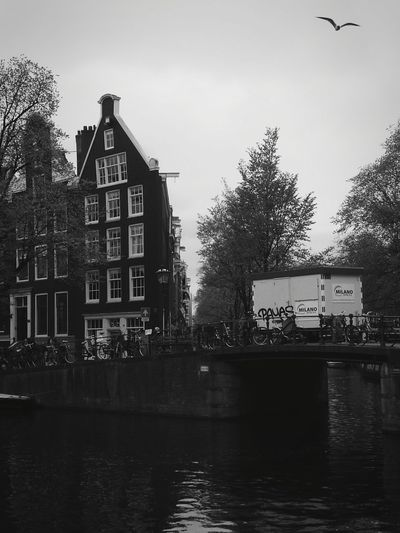 Building Exterior Cloud - Sky House Architecture Water Built Structure Outdoors Residential Building City No People Sky Tree Day Travel Destinations Street Photography Travel Photography Amsterdam Canal Streetphoto_bw Blackandwhite Taking Photos The Street Photographer - 2017 EyeEm Awards The Architect - 2017 EyeEm Awards Amsterdam
