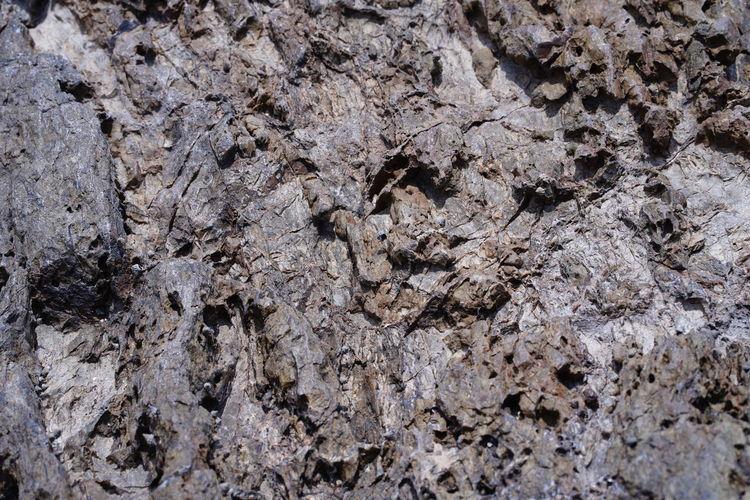 Full frame shot of a rock