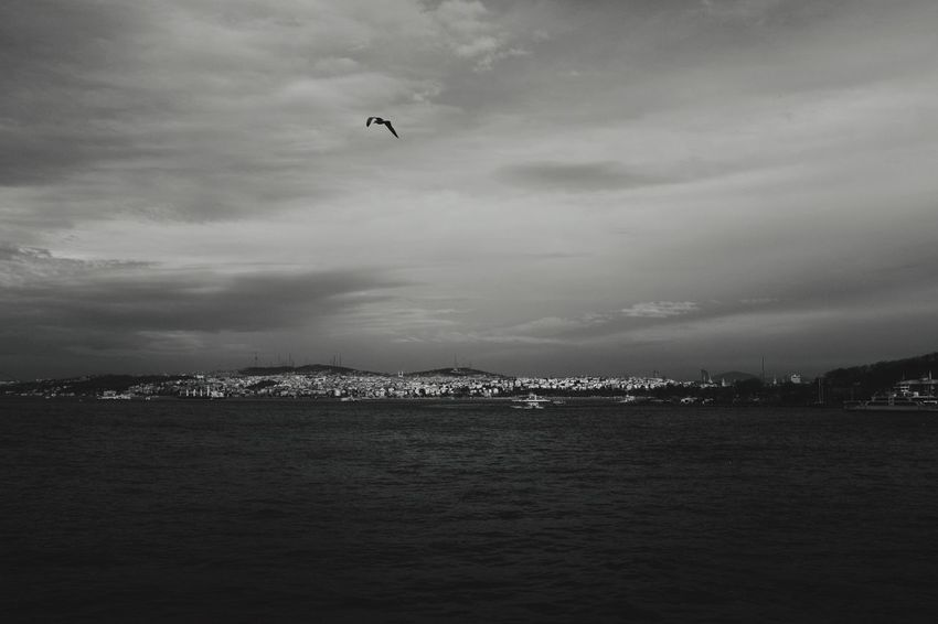 Istanbul Istanbul - Bosphorus Cityscape