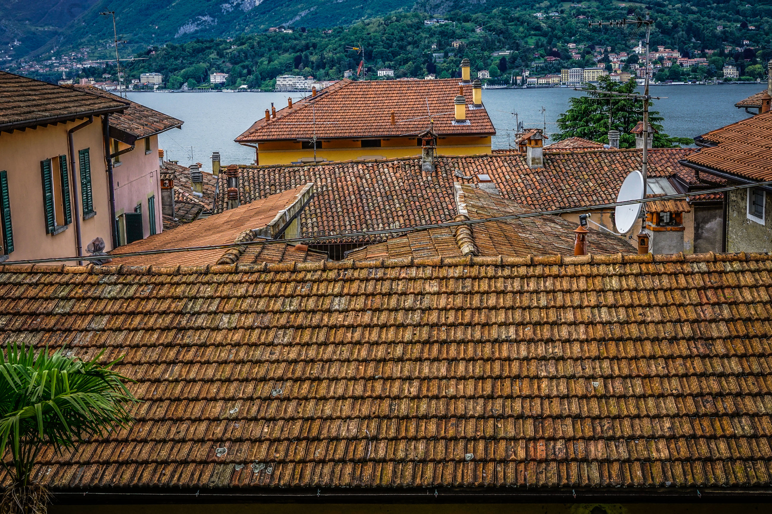 architecture, built structure, building exterior, building, roof, roof tile, residential district, house, high angle view, nature, day, no people, city, outdoors, tree, town, plant, travel destinations, water, brown, townscape