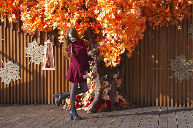 Autumn Tree Tradition One Person Leaf People Adult Adults Only Full Length One Woman Only Only Women Celebration Outdoors Standing Night Women Nature Young Women Young Adult One Young Woman Only