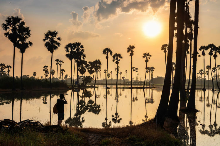 Silhouette palm trees by swimming pool against lake during sunset