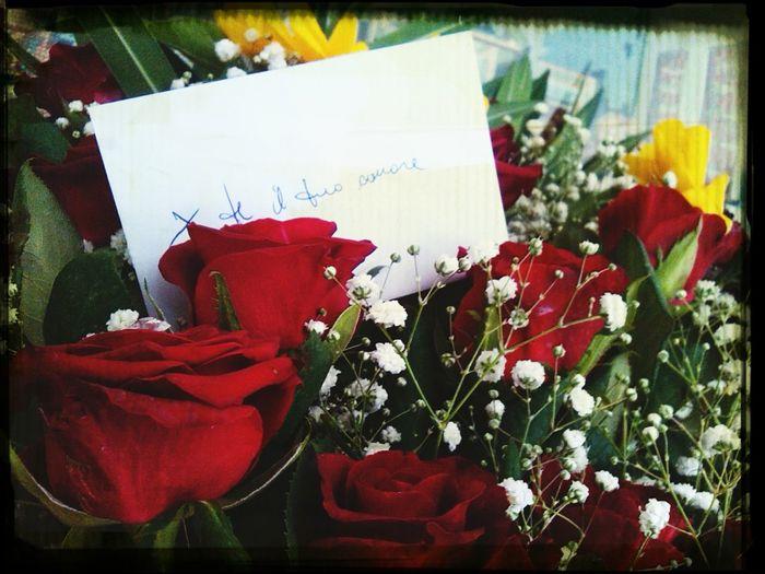 Red Rose Love 2 Anni D'amore Secondo Anniversario Assieme
