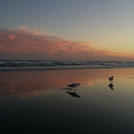 Sunset At Long Beach, NY Splendid_reflections Beautiful Sky Eyem Best Shots Nature_collection EyeEm Sunset EyeEm Best Shots Visualmagic Popular Photos Sky Collection