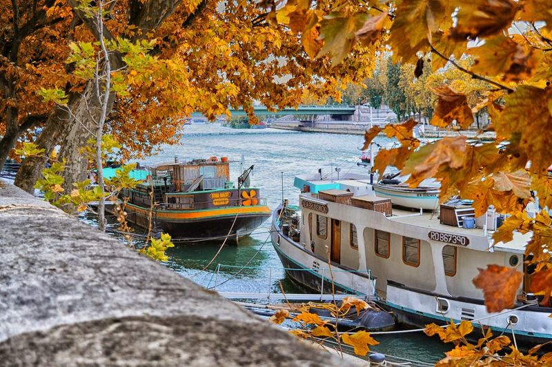 Autumn Water Mode Of Transportation Nautical Vessel Nature Tree Transportation Change Plant Orange Color Day No People Moored Plant Part Yellow Leaf Beauty In Nature Outdoors Land Leaves