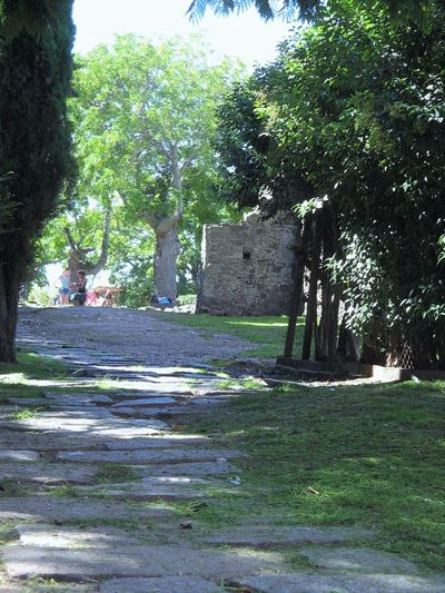 Neighborly gossip. Two women talking in a cobblestone passageway in a neighborhood in the Old Town of Colonia del Sacramento. Old stone building surrounded by trees. Alleyway Coble Stones Day Grass Green Color Growth Nature Neighbourhood Neighbours Old Buildings Old Town Outdoors Passageway Shaded Path Tranquil Scene Tree Women Women Talk