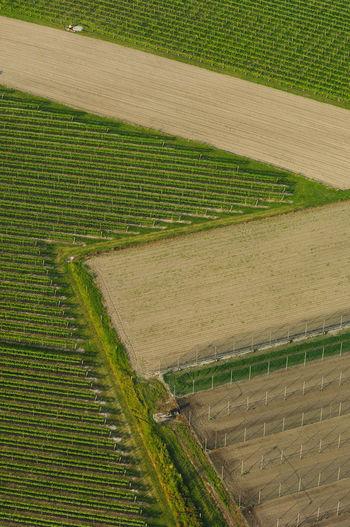 Aerial view of field boundaries