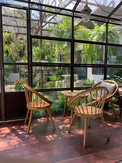 Seat Chair Table Plant No People Day Window Absence Indoors  Nature Furniture Architecture Growth Wood - Material Tree Built Structure Glass - Material Empty Transparent