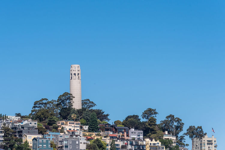 Architecture Built Structure Building Exterior Sky Clear Sky Tree Blue Building Copy Space Nature Plant Tower Day No People The Past City History Tall - High Sunlight Residential District Outdoors Coit Tower