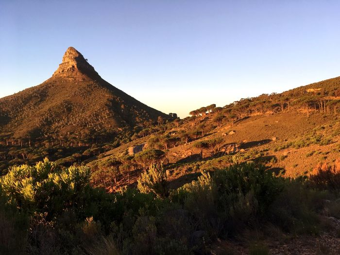 Lionshead Lionshead Southafrica Mountain Nature Landscape Beauty In Nature Clear Sky Tranquil Scene Tranquility Outdoors No People Sky Day First Eyeem Photo