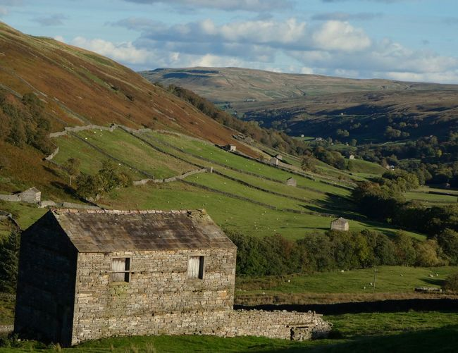 Swaledale landscape_photography Landscape_Collection Copy Spa EyeEm Best Shots EyeEm Nature Lover Landscape_photography Landscape_Collection Copy Space Autumn Scenics - Nature Landscape Tranquil Scene Environment Tranquility Sky Beauty In Nature Rural Scene No People Cloud - Sky Nature