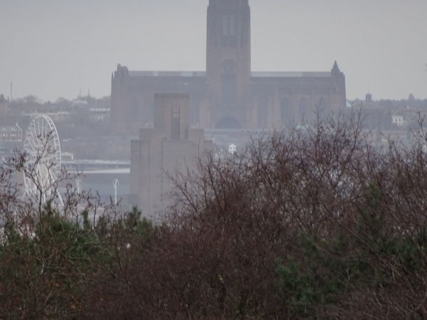 Liverpool Cathedral In Distance View From Bidston Hill Outdoors Architecture Sky Autumn Day Nature Trees