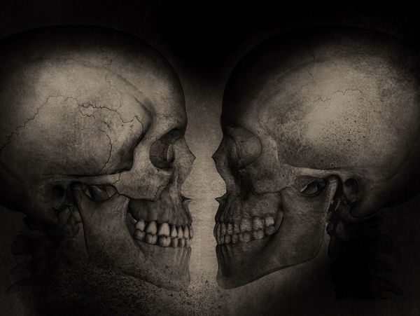 Dialogue Art ArtWork Skull Illustration Gettyimages Getty Images